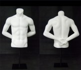 Male Athletic Torso Form - Arms Behind Back